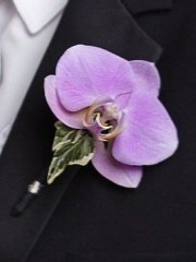 True Love Boutonniere